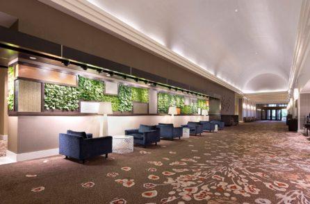 Vertical garden and lobby.